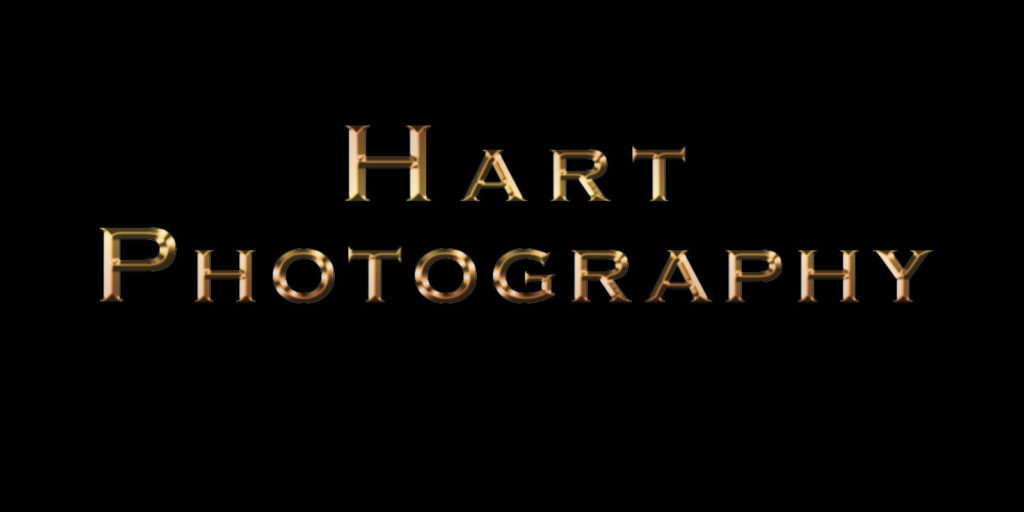 Head Shot Photography by HartPhotography at HartPhotography.Net